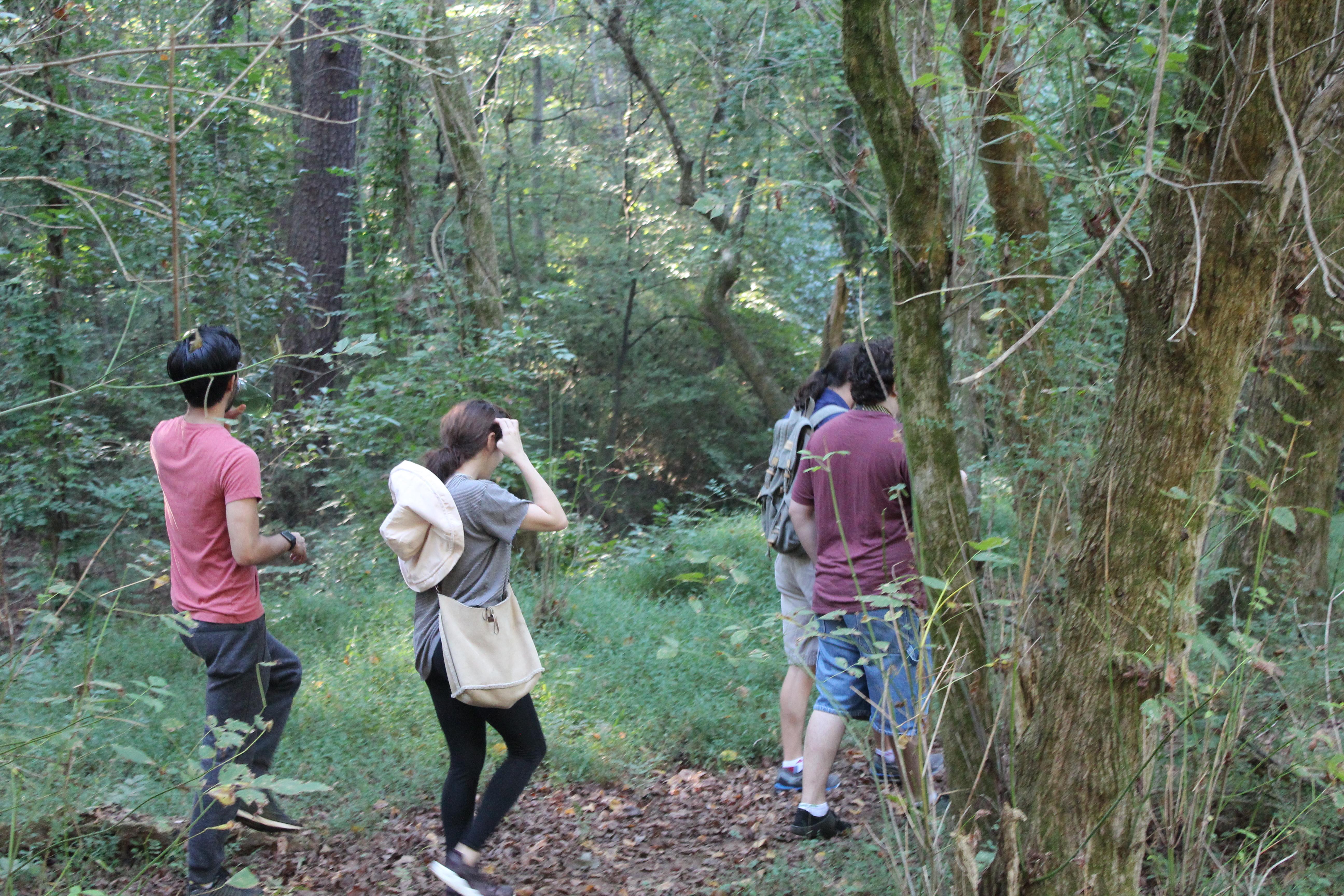 Ben - Venturing into the Woods